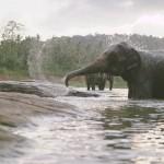 elefant_original