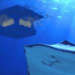 underwaterroom-slide-21