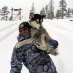 mike_basicht_area_241_snowboard_33