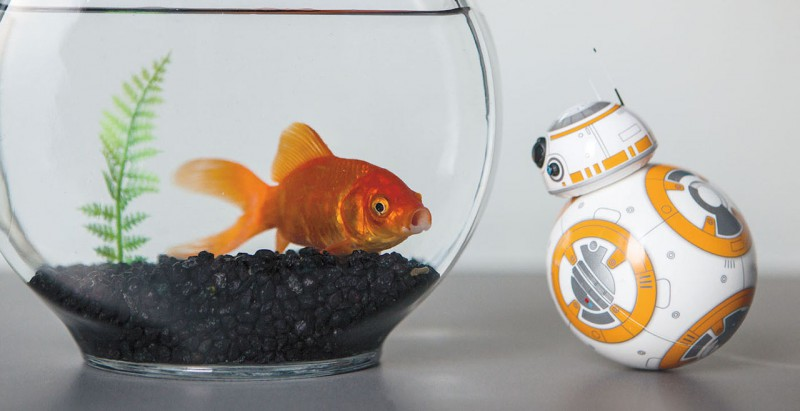 sphero-BB-8-star-wars-droid_08