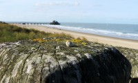 Belga tengerpart – ZeeBrugge, Blankenberge, Oostende