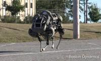 26km/h sebességgel üget az ádáz robotmacska