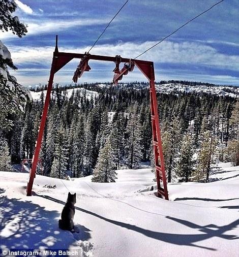 mike_basicht_area_241_snowboard_19